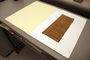 Large papyrus fragment sitting in an open folder.