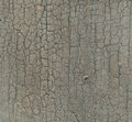 Crackle in paint on wood.jpg