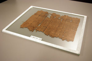 Papyrus fragment housed between two sheets of glass.